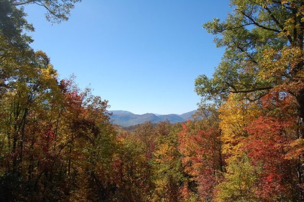 Can't wait to be back in Gatlinburg, Tennessee. Too bad we're missing the fall foliage!