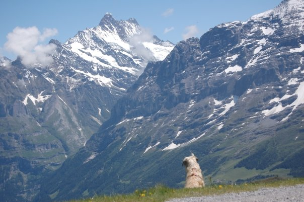 It's a big ol world out there (Switzerland, 2009)