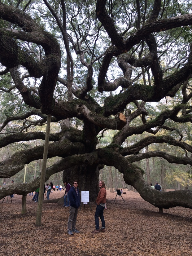 Angel Oak.
