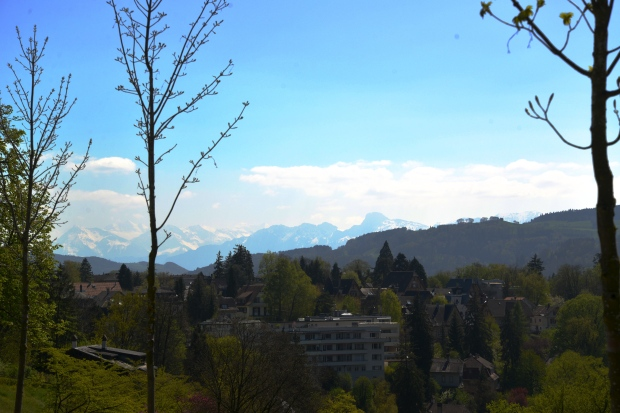 View of the Alps from Rosengarten.