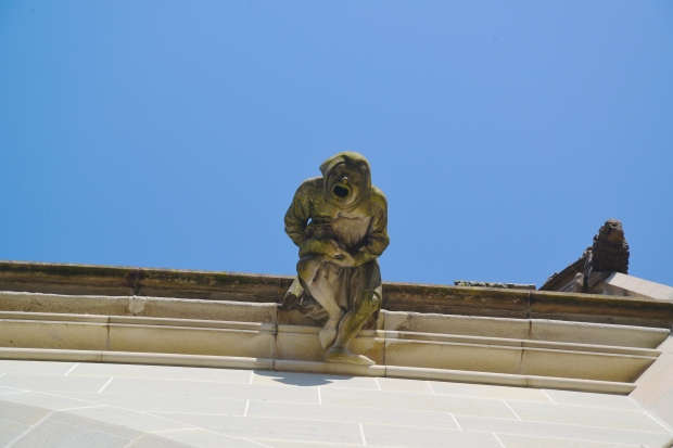 This guy was on the ledge of the church when you looked up.