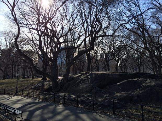 A cold Central Park.