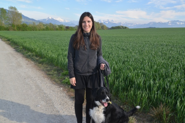 Walking Sam the dog with the Alps in the background.
