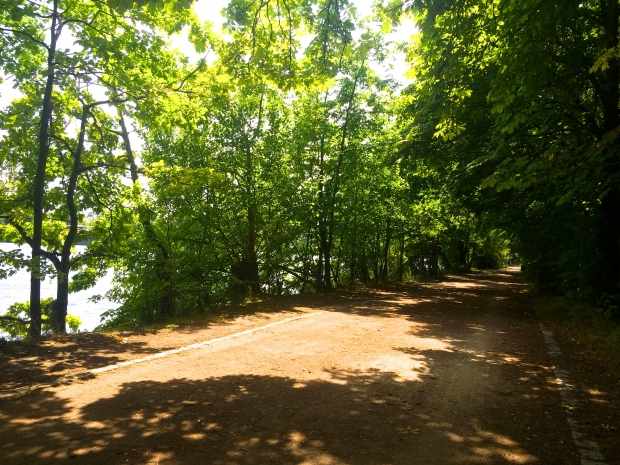 Dirt path along the river.