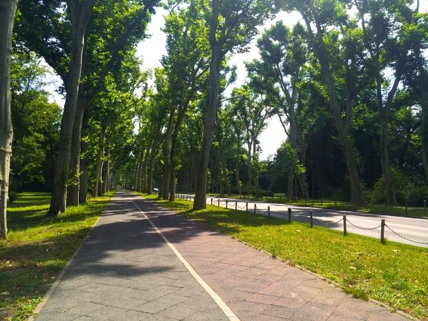 Pedestrian paths for days.