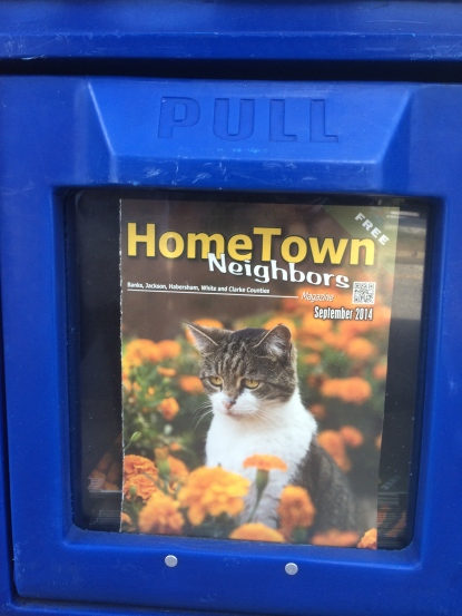 Is this not the saddest magazine cover you've ever seen?