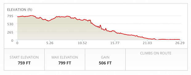 I was worried about too much downhill at first, but I read every review of the race I could find and the consensus was that it's a gentle slope that you hardly notice.