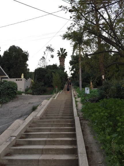 One of the hidden stairs in the neighborhood.