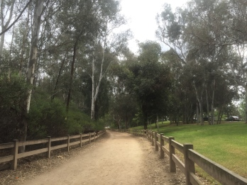 A lot of my route was on this nice dirt path in Griffith Park.
